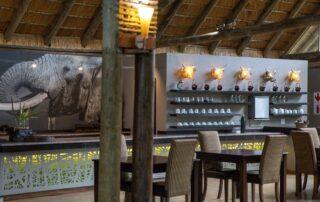 Royal-Thonga-Dining-Tembe-Elephant-Park-Xscape4u