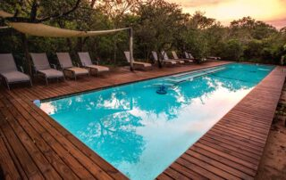 Royal-Thonga-Pool-Tembe-Elephant-Park-Xscape4u