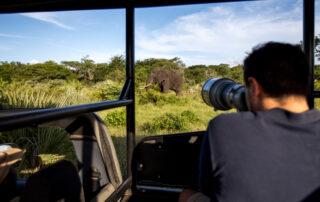 Royal-Thonga-Game-Drive-Tembe-Elephant-Park-Xscape4u