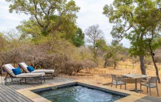 Siviti-Timbavati-Lodge-Suite-Pool-Thornybush-Game-Reserve-Xscape4u
